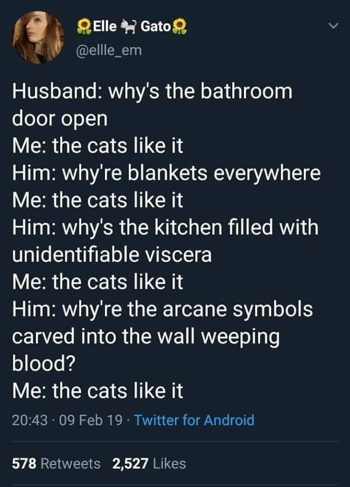 meme - Text - Elle Gato @elle_em Husband: why's the bathroom door open Me: the cats like it Him: why're blankets everywhere Me: the cats like it Him: why's the kitchen filled with unidentifiable viscera Me: the cats like it Him: why're the arcane symbols carved into the wall weeping blood? Me: the cats like it 20:43 09 Feb 19 Twitter for Android 578 Retweets 2,527 Likes