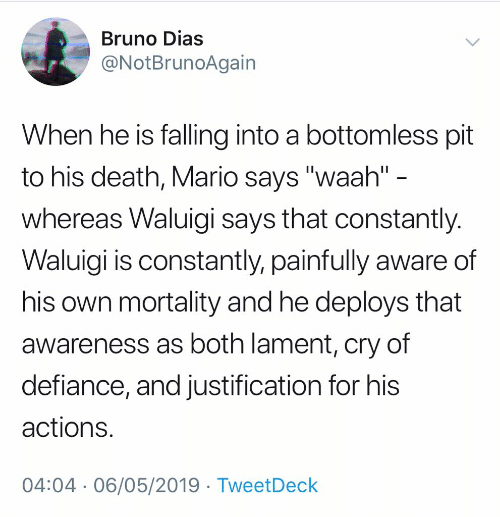 "meme - Text - Bruno Dias @NotBrunoAgain When he is falling into a bottomless pit to his death, Mario says ""waah"" - whereas Waluigi says that constantly. Waluigi is constantly, painfully aware of his own mortality and he deploys that awareness as both lament, cry of defiance, and justification for his actions. 04:04 06/05/2019 TweetDeck"