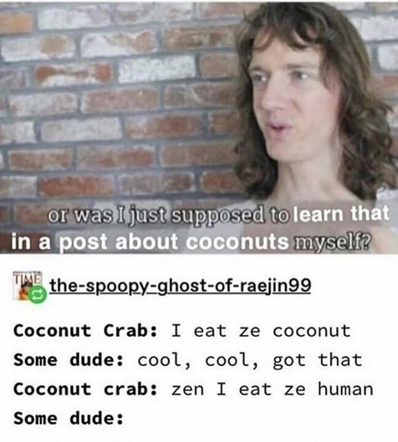 tumblr - Text - or was I just supposed to learn that in a post about coconuts myself? the-spoopy-ghost-of-raejin99 Coconut Crab: I eat ze coconut Some dude: cool, cool, got that Coconut crab: zen I eat ze human Some dude: