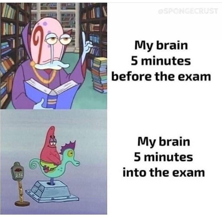meme - Cartoon - SPONGECRUST My brain 5 minutes before the exam My brain 5 minutes into the exam 25