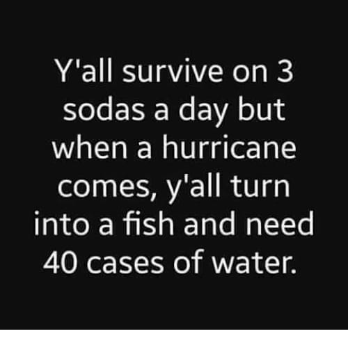 meme - Text - Y'all survive on 3 sodas a day but when a hurricane comes, y'all turn into a fish and need 40 cases of water.
