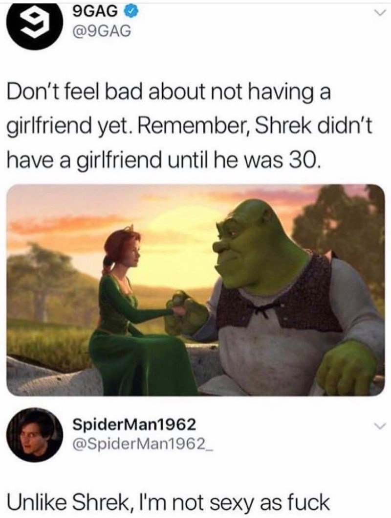 Text - 9 9GAG @9GAG Don't feel bad about not having girlfriend yet. Remember, Shrek didn't have a girlfriend until he was 30. SpiderMan1962 @SpiderMan1962 Unlike Shrek, I'm not sexy as fuck