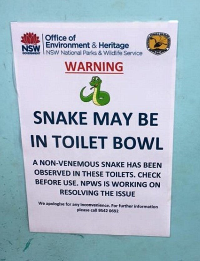 Text - Office of Environment&Heritage NSW NSW National Parks & Wildlife Service WARNING SNAKE MAY BE IN TOILET BOWL A NON-VENEMOUS SNAKE HAS BEEN OBSERVED IN THESE TOILETS. CHECK BEFORE USE. NPWS IS WORKING ON RESOLVING THE ISSUE We apologise for any inconvenience. For further information please call 9542 0692