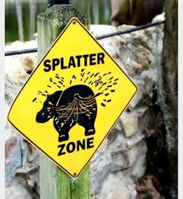Signage - SPLATTER ZONE