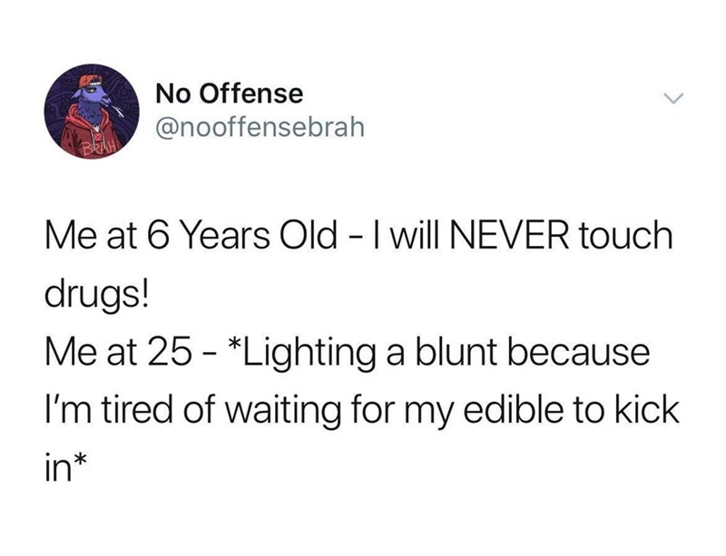Text - No Offense @nooffensebrah Me at 6 Years Old - I will NEVER touch drugs! Me at 25 - *Lighting a blunt because I'm tired of waiting for my edible to kick in*
