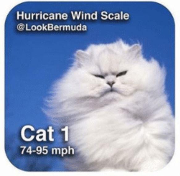 Cat - Hurricane Wind Scale @LookBermuda Cat 1 74-95 mph