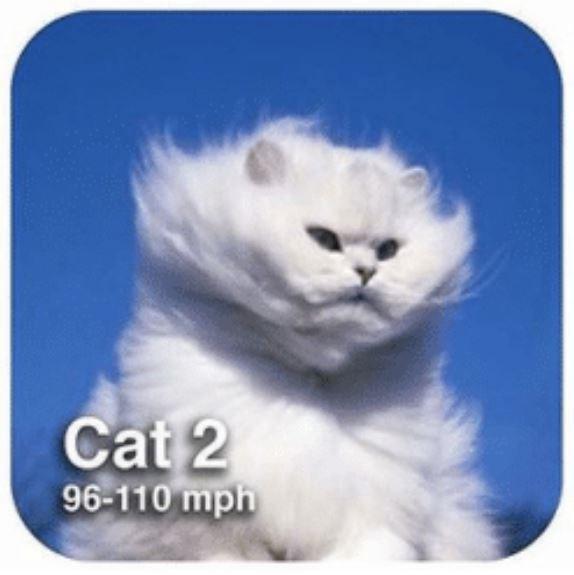 Cat - Cat 2 96-110 mph