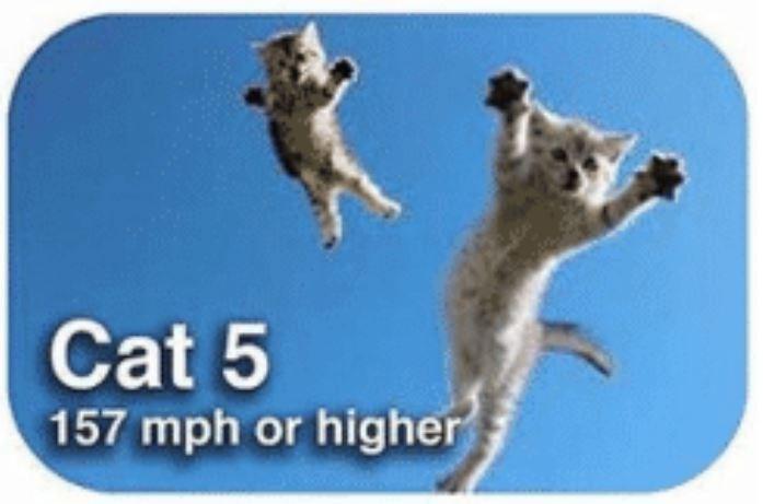 Meerkat - Cat 5 157 mph or higher
