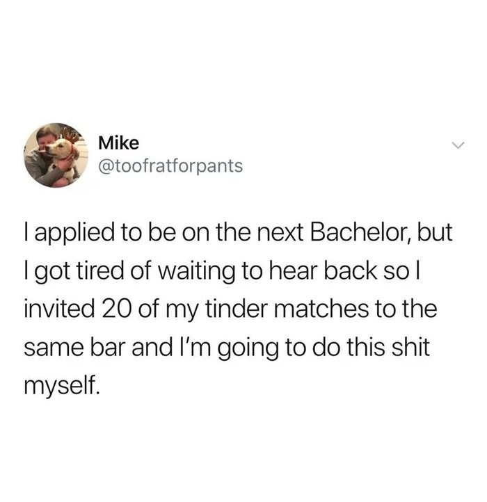 "Funny tweet that reads, ""I applied to be on the next Bachelor, but I got tired of waiting to hear back so l invited 20 of my tinder matches to the same bar and I'm going to do this shit myself."""