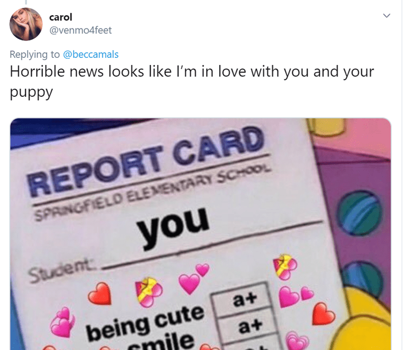 Text - carol @venmo4feet Replying to @beccamals Horrible news looks like I'm in love with you and your puppy REPORT CARD SPRINGFIELD ELEMENTARY SCHOOL you Student a+ being cute mile a+ >