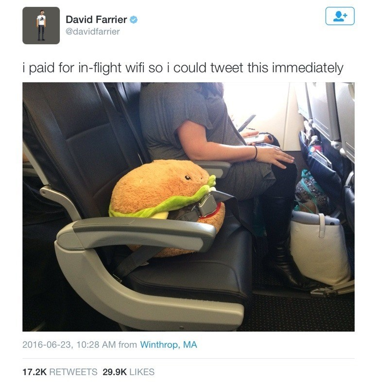 wholesome animal meme - Car seat - David Farrier @davidfarrier i paid for in-flight wifi so i could tweet this immediately 2016-06-23, 10:28 AM from Winthrop, MA 17.2K RETWEETS 29.9K LIKES