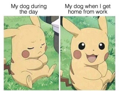 wholesome animal meme - Cartoon - My dog during the day My dog when I get home from work