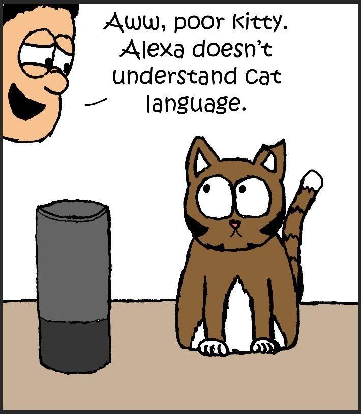 cat vs alexa - Cartoon - Aww, poor kitty Alexa doesn't understand Cat language