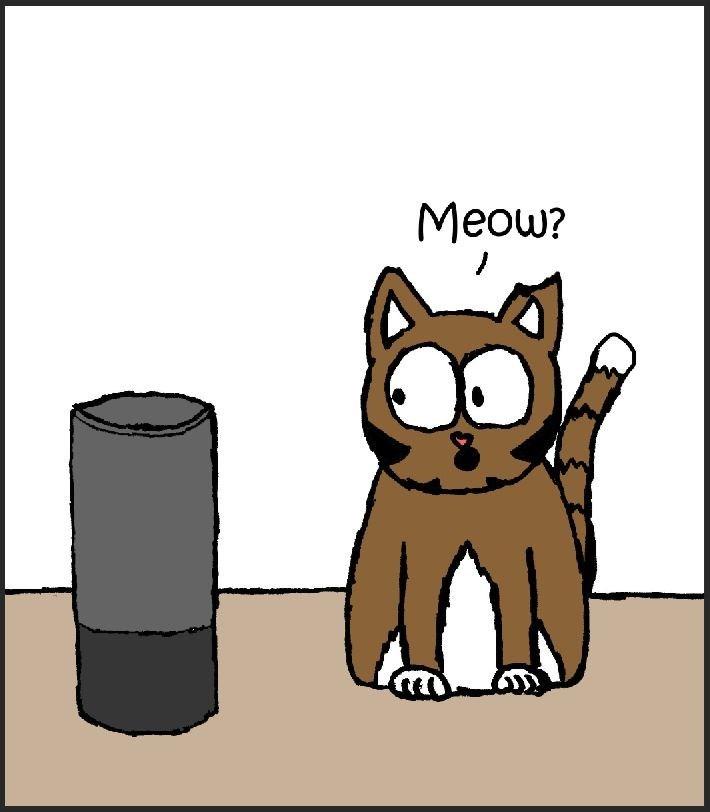 cat vs alexa - Cartoon - Meow?