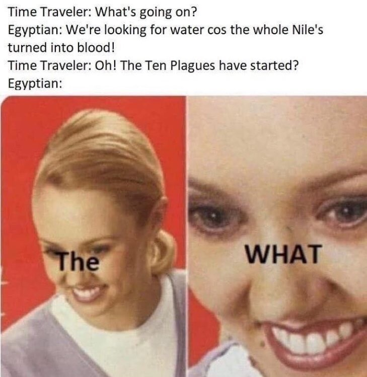 """Funny meme that reads, """"Time Traveler: What's going on? Egyptian: We're looking for water cos the whole Nile's turned into blood! Time Traveler: Oh! The Ten Plagues have started? Egyptian: WHAT The"""""""