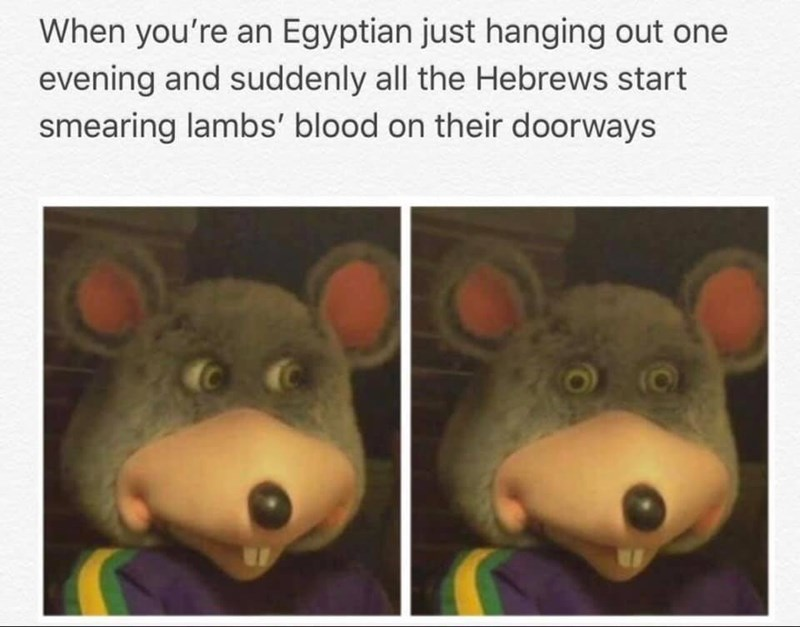 Text - When you're an Egyptian just hanging out one evening and suddenly all the Hebrews start smearing lambs' blood on their doorways