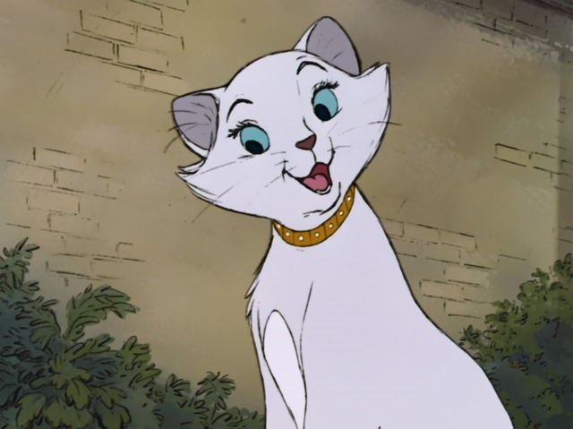 Pawsome List Of Disney Names For Your New Cat - I Can Has