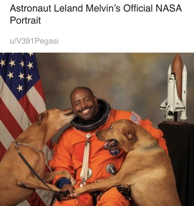 Dog - Astronaut Leland Melvin's Official NASA Portrait u/V391Pegasi