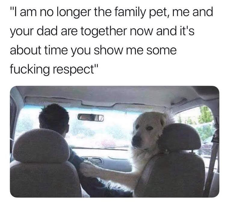 """Canidae - """"I am no longer the family pet, me and your dad are together now and it's about time you show me some fucking respect"""""""
