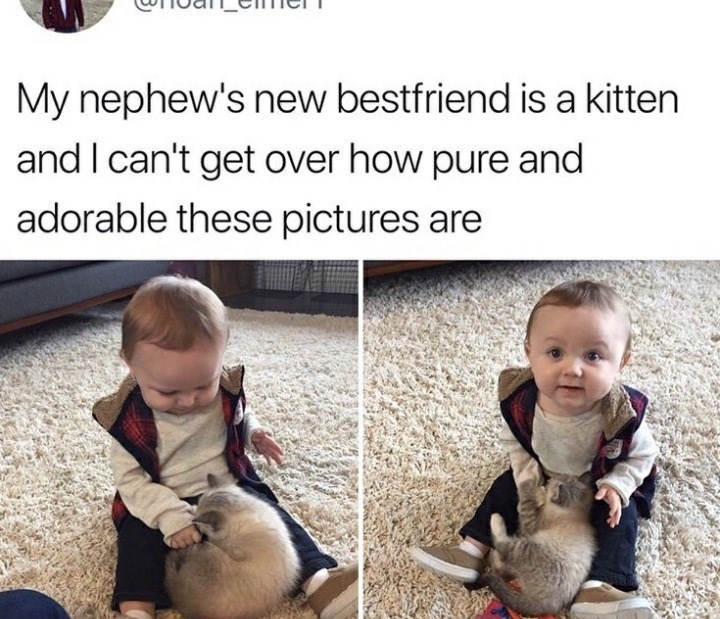 Child - My nephew's new bestfriend is a kitten and I can't get over how pure and adorable these pictures are