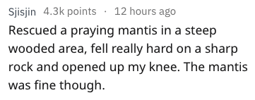Text - Sjisjin 4.3k points 12 hours ago Rescued a praying mantis in a steep wooded area, fell really hard on a sharp rock and opened up my knee. The mantis was fine though