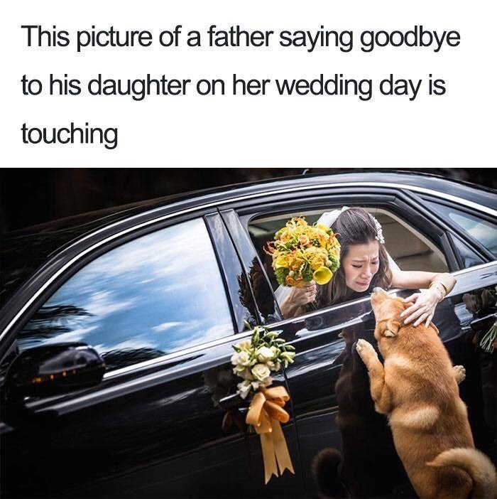 Vehicle door - This picture of a father saying goodbye to his daughter on her wedding day is touching
