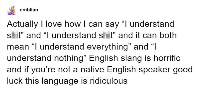 "Text - emblian Actually I love how I can say ""I understand s t and ""I understand slit"" and it can both mean ""I understand everything"" and ""I understand nothing"" English slang is horrific and if you're not a native English speaker good luck this language is ridiculous"