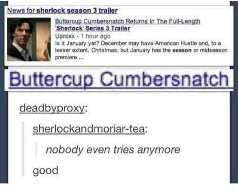 meme - Text - News for sherlock season 3 trailer Buttercup Cumbersnatch Returns In The Full-Length Sherlock Series 3 Trailer Uproxx-1 hour ago is it January yet? December may have American Hustle and, to a lesser extent, Christmas, but January has the season or midseason premiere Buttercup Cumbersnatch deadbyproxy: sherlockandmoriar-tea: nobody even tries anymore good