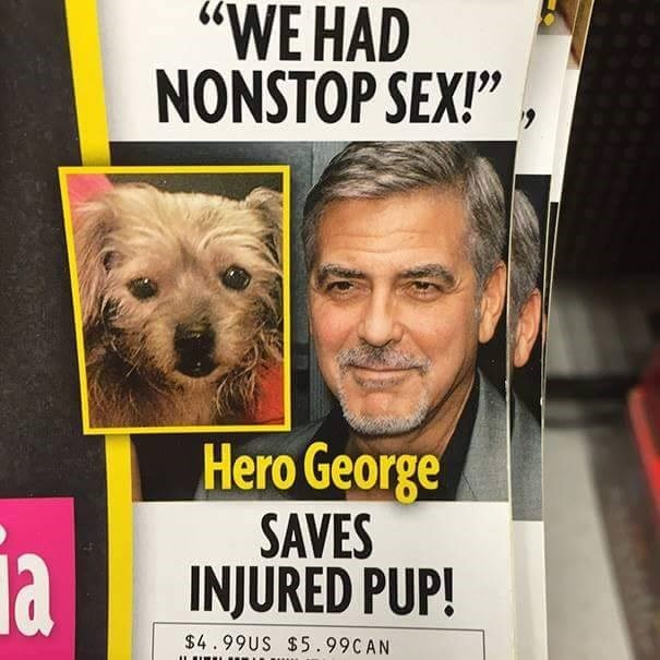 "Dog - ""WE HAD NONSTOP SEX!"" Hero George SAVES INJURED PUP! ia $4.99US $5.99CAN"