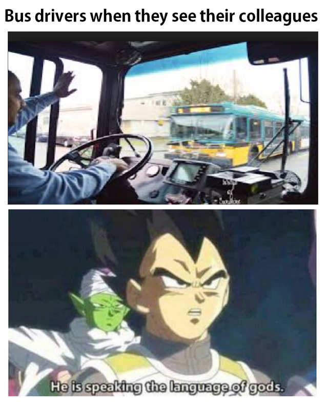 dragon ball meme - Cartoon - Bus drivers when they see their colleagues is speaking the language of gods.