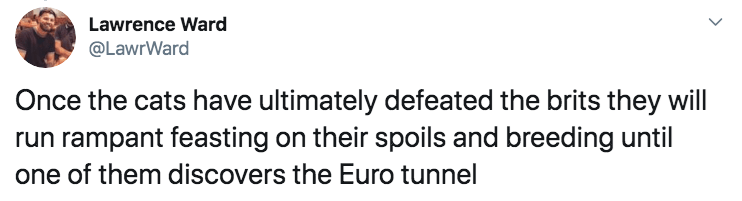 Text - Lawrence Ward @LawrWard Once the cats have ultimately defeated the brits they will run rampant feasting on their spoils and breeding until one of them discovers the Euro tunnel