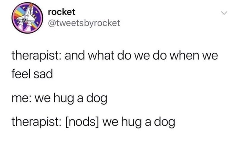 meme - Text - rocket @tweetsbyrocket therapist: and what do we do when we feel sad me: we hug a dog therapist: [nods] we hug a dog