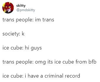 transphobia - Text - skitty @pmdskitty trans people: im trans society: k ice cube: hi guys trans people: omg its ice cube from bfb ice cube: i have a criminal record