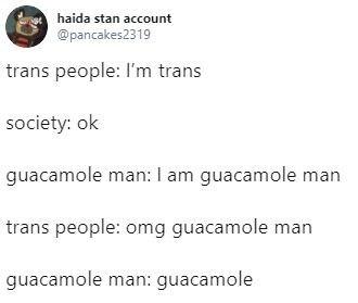 transphobia - Text - haida stan account @pancakes2319 trans people: I'm trans society: ok guacamole man: I am guacamole man trans people: omg guacamole man guacamole man: guacamole
