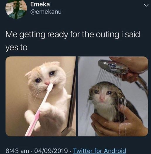 Cat - Emeka @emekanu Me getting ready for the outing i said yes to 8:43 am 04/09/2019 Twitter for Android