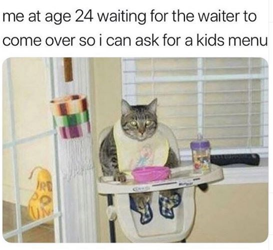 Smokin' Hot Cat Memes For A Midday Caturday Snack (28 Memes