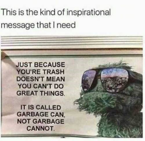 Text - This is the kind of inspirational message that I need JUST BECAUSE YOU'RE TRASH DOESN'T MEAN YOU CAN'T DO GREAT THINGS IT IS CALLED GARBAGE CAN NOT GARBAGE CANNOT
