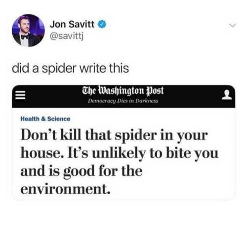 Text - Jon Savitt @savittj did a spider write this The Washington Post Demoeracy Dies in Darkness Health& Science Don't kill that spider in your house. It's unlikely to bite you and is good for the environment.