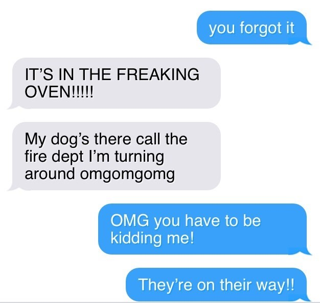 texting - Text - you forgot it IT'S IN THE FREAKING OVEN!!!! My dog's there call the fire dept I'm turning around omgomgomg OMG you have to be kidding me! They're on their way!!