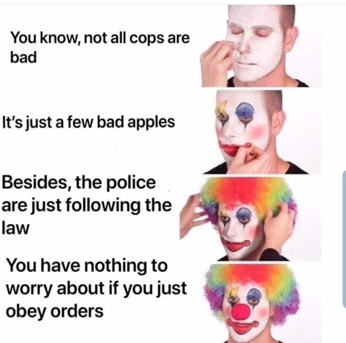 """Funny meme that reads, """"You know, not all cops are bad; It's just a few bad apples; Besides, the police are just following the law; You have nothing to worry about if you just obey orders"""""""