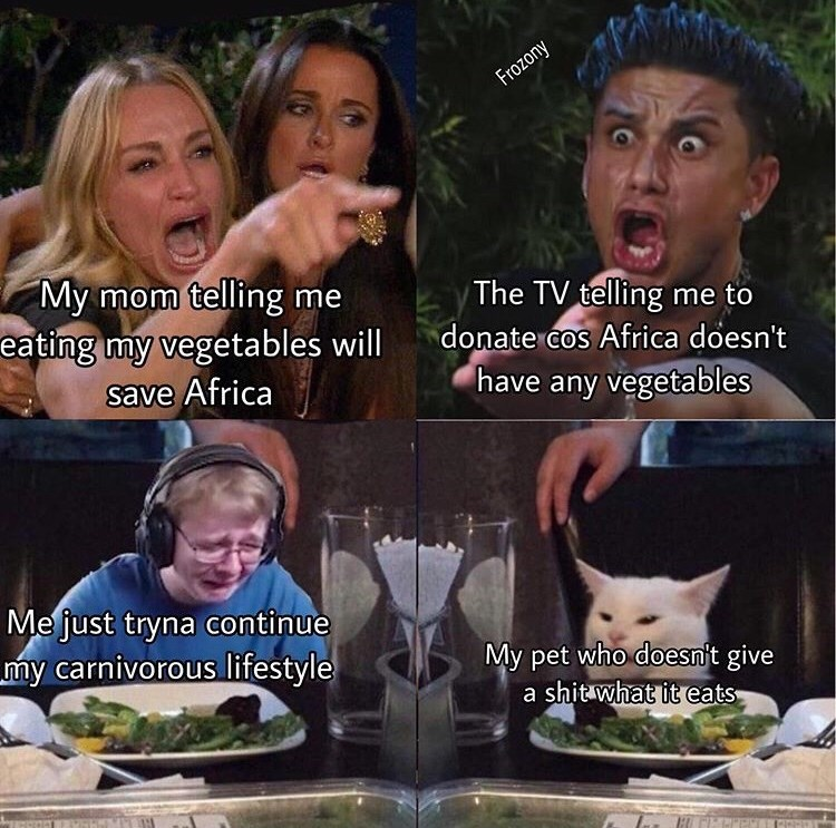 meme - Facial expression - Frozony My mom telling me eating my vegetables will The TV telling me to donate cos Africa doesn't have any vegetables save Africa Mejust tryna continue my carnivorous lifestyle My pet who doesnt give a shit what it eats