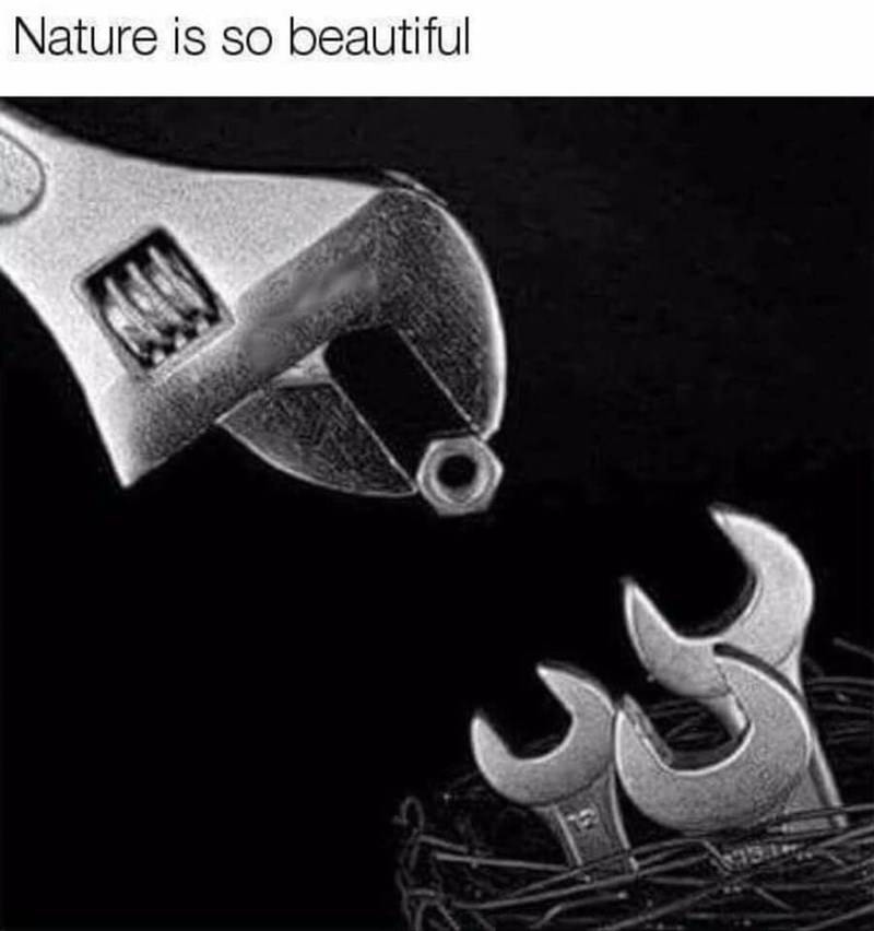 Font - Nature is so beautiful
