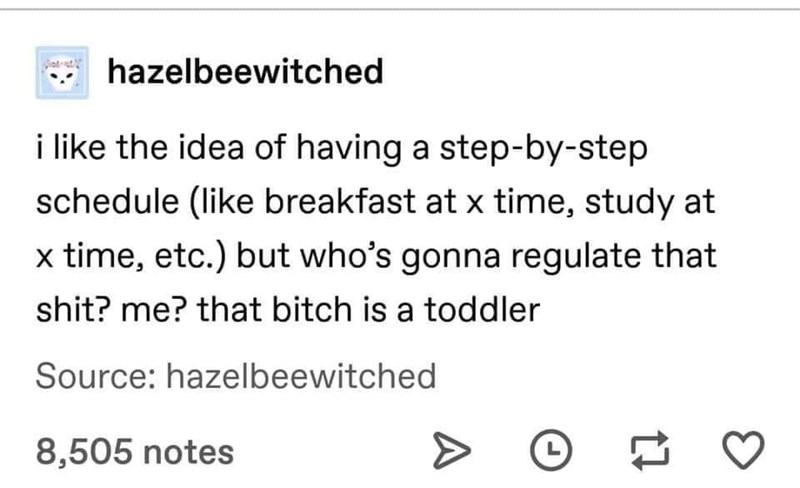 meme - Text - hazelbeewitched i like the idea of having a step-by-step schedule (like breakfast at x time, study at x time, etc.) but who's gonna regulate that shit? me? that bitch is a toddler Source: hazelbeewitched 8,505 notes