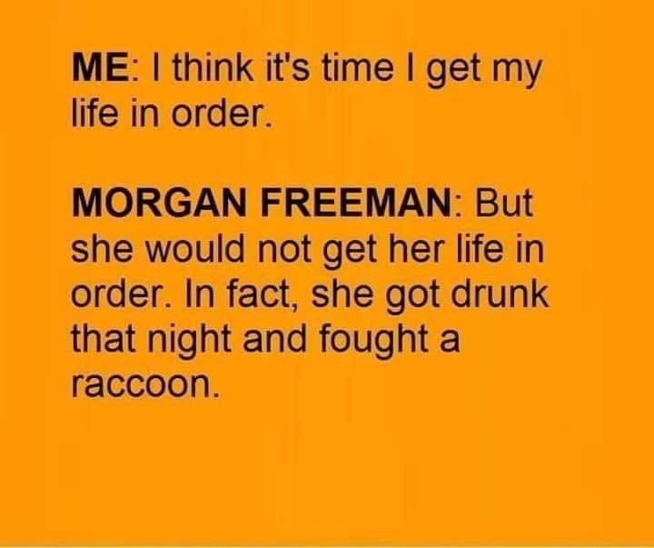 meme - Text - ME: I think it's time I get my life in order. MORGAN FREEMAN: But she would not get her life in order. In fact, she got drunk that night and fought a raccoon.