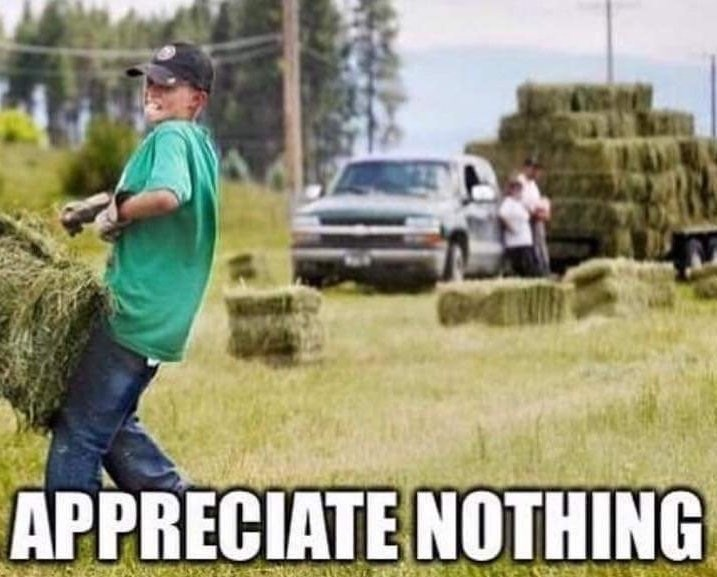 cropped boomer meme - Grass - APPRECIATE NOTHING