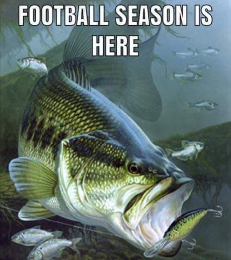 cropped boomer meme - Fish - FOOTBALL SEASON IS HERE