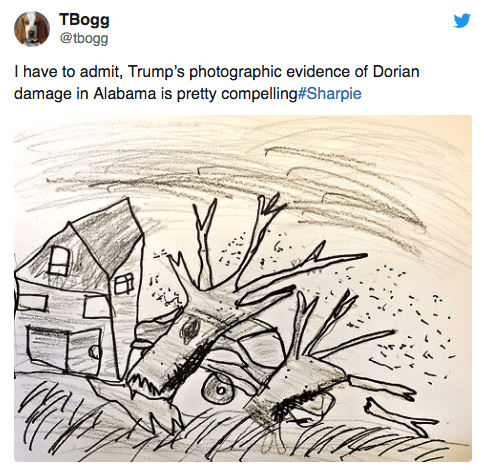Botany - TBogg @tbogg I have to admit, Trump's photographic evidence of Dorian damage in Alabama is pretty compelling# Sharpie