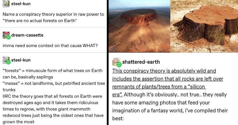 Funny and entertaining thoughts from various Tumblr users.