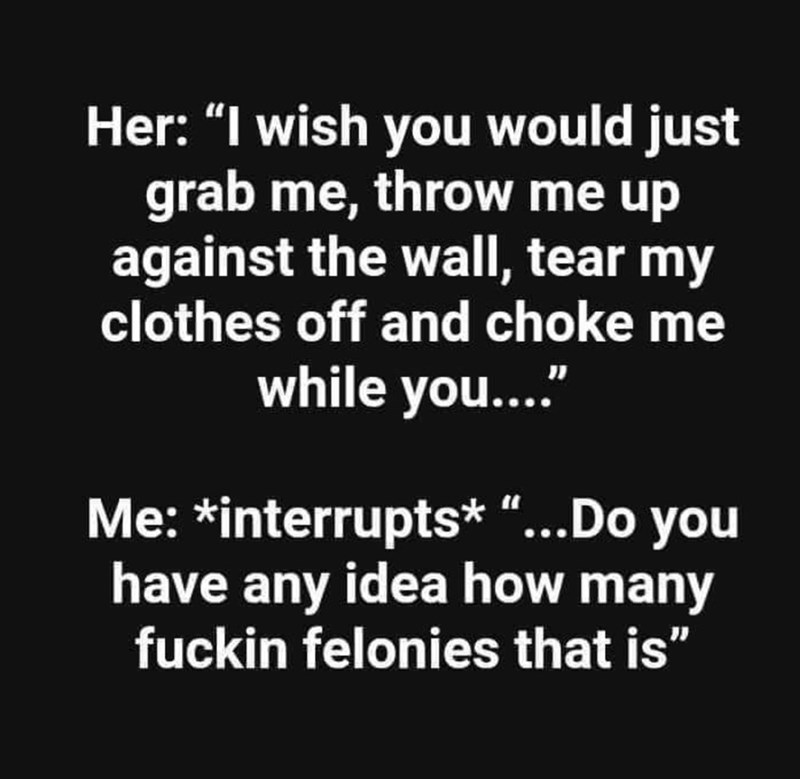 """Text - Her: """"I wish you would just grab me, throw me up against the wall, tear my clothes off and choke me while you.... Me: *interrupts* """"...Do you have any idea how many fuckin felonies that is"""""""