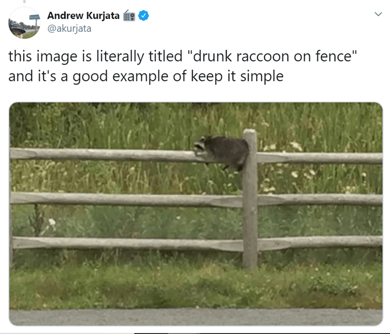 "Fence - Andrew Kurjata @akurjata Drata this image is literally titled ""drunk raccoon on fence"" and it's a good example of keep it simple"